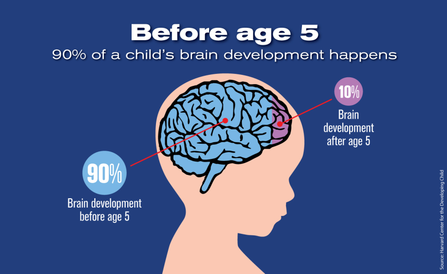 Education And The Brain on Preschool Developmental Milestones